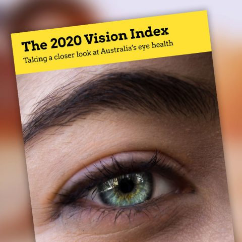 2020 Vision Index report