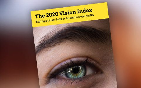 The 2020 Vision Index report is live