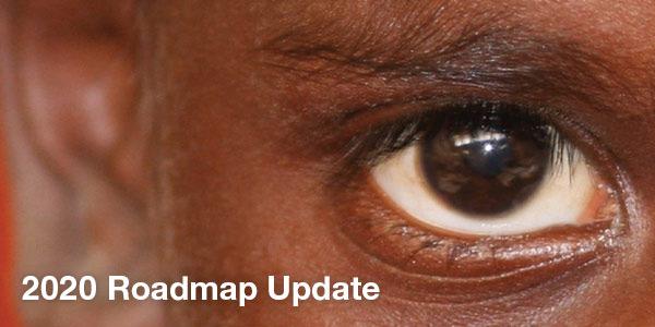 Good progress to Close the Gap for Vision despite missing 2020 target