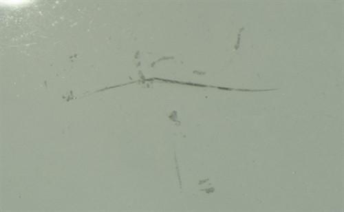 Figure 3 - Cracked Lens - Case study 2 - online